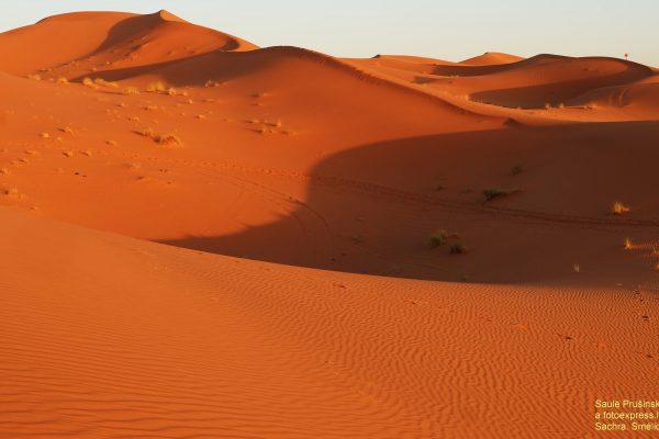 26u Marokas. Smėlio kopos